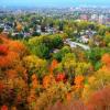 Autumn Hidden Images