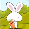 Carrots Hunter