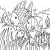 Coloring Fishes -1