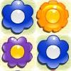 flower_match