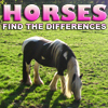 Horses: Find the Differences