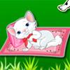 Kitten Mission