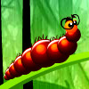 Larva Dream