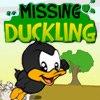 Missing Duckling