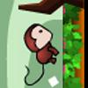 Run Run Monkey