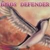小鸟守护者