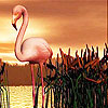 Alone flamingo slide puzzle
