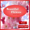 Beautiful Flowers – Find The Numbers