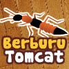 Berburu Tomcat