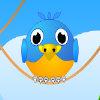 Birds Defenders