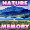 Brain Memory: Nature
