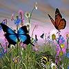Butterflies slide puzzle