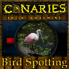 Canaries in a coalmine – Bird Spotting