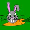 Carrot Crunch