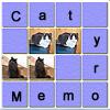 Cat Memory!