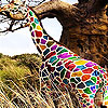 Colorful  hungry giraffe slide puzzle
