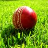 Cricket World Jigsaw
