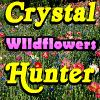 Crystal Hunter Wildflowers
