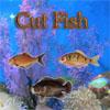 Cut Fish