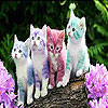 Cute kittens slide puzzle