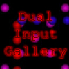 Dual Input Gallery