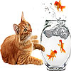 Fishes and cat slide puzzle