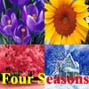 Four Seasons: Spring, Summer, Autumn or Winter?