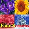 Four Seasons: Spring, Summer, Autumn or Winter?