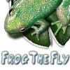 Frog The Fly