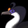 Funny Bird Names