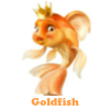 Goldfish. Find objects