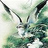 Green eagle slide puzzle