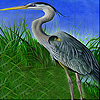 Heron in the reeds slide puzzle