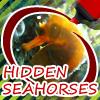 Hidden Seahorses