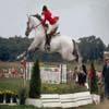 Horse Jumping Jigsaw