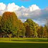 Jigsaw: Autumn Park