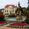 Jigsaw: Garden Fountain