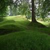 Jigsaw: Grassy Path
