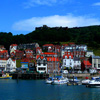 Jigsaw: Harbor and Town