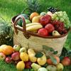 Jigsaw is a basket of fruit