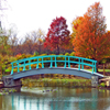 Jigsaw: Monet Bridge