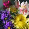Jigsaw: Mood Flowers