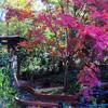 Jigsaw: Pink Tree