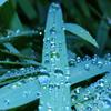 Jigsaw: Waterdrops