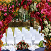 Jigsaw: Wedding Arch