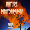 Nature Photography – Find the Numbers