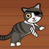 Pirate Cat With Broken Leg