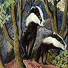 Raccoons in the forest slide puzzle
