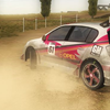 rally car game