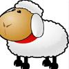 Sheep Jıgsaw Puzzle
